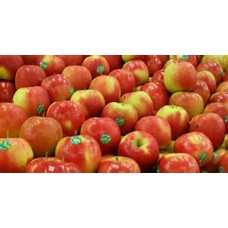Apples (1 box)