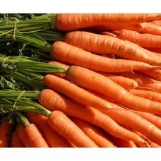 Carrot (1 bag)